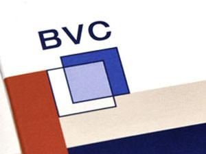 BVC Immobilien